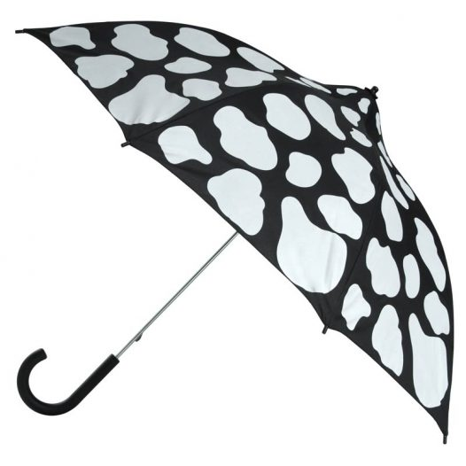 8a4af4470516e Ladies Walking Umbrellas. Choose from over 1000 designs and styles!